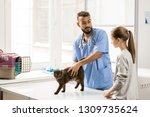 young veterinarian talking to... | Shutterstock . vector #1309735624