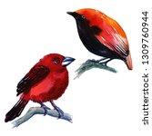 watercolor exotic birds... | Shutterstock . vector #1309760944