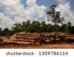 deforestation of the amazon...   Shutterstock . vector #1309786114