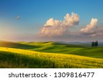 spring farmland and country... | Shutterstock . vector #1309816477