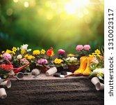 garden flowers  plants and... | Shutterstock . vector #1310023117