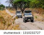 chobe n.p.  savuti area ...   Shutterstock . vector #1310232727