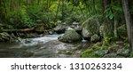 little stony creek as it... | Shutterstock . vector #1310263234