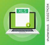 download xls button on laptop...