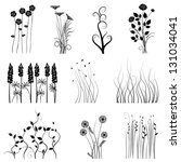 collection for designers  plant ... | Shutterstock .eps vector #131034041