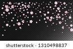nice sakura blossom isolated... | Shutterstock .eps vector #1310498837