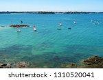sails of catamarans in ocean...   Shutterstock . vector #1310520041