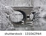 Snow Covered Trees Framing A...
