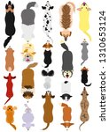 dogs breed top view set | Shutterstock .eps vector #1310653124