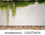 Stone Floor And Mossy Plaster...