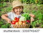 child and vegetables on the... | Shutterstock . vector #1310741627