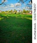 the beautiful summer landscape...   Shutterstock . vector #1310748257