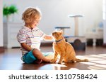 Stock photo child playing with cat at home kids and pets little boy feeding and petting cute ginger color cat 1310758424