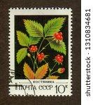 ussr stamp   circa 1982  a... | Shutterstock . vector #1310834681