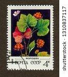 ussr stamp   circa 1982  a... | Shutterstock . vector #1310837117