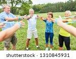 group of active seniors... | Shutterstock . vector #1310845931