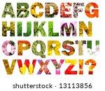 colorful floral alphabet | Shutterstock . vector #13113856