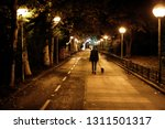 Stock photo young pretty girl walking the dog at night in winter 1311501317