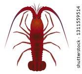 a spiny lobster | Shutterstock .eps vector #1311559514