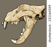 cráneo animal,detallado,dibujado a mano,ilustración,aislado,león,cráneo de león,mamíferos,boca abierta,antiguo,pluma y tinta,cráneo