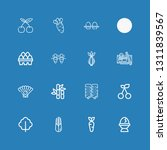 editable 16 raw icons for web... | Shutterstock .eps vector #1311839567