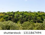 the summer landscape near the... | Shutterstock . vector #1311867494