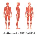 vector illustration of three... | Shutterstock .eps vector #1311869054