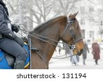 Police Officer Patrolling On...