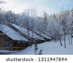 beautiful view of the winter... | Shutterstock . vector #1311947894