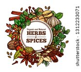 hand drawn vector herbs and... | Shutterstock .eps vector #1312233071