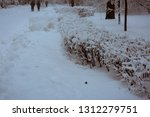 snowy park with trees covered... | Shutterstock . vector #1312279751