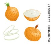 cartoon brown or yellow onions... | Shutterstock .eps vector #1312350167