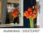 beautiful hippeastrum bouquet... | Shutterstock . vector #1312711427
