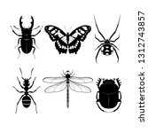 set of different insects on...   Shutterstock .eps vector #1312743857