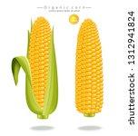 corn maize vector realistic... | Shutterstock .eps vector #1312941824