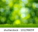 Grass And Defocused Green...