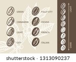 coffee roasting stages | Shutterstock .eps vector #1313090237