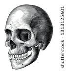 antique of human skull vintage... | Shutterstock .eps vector #1313125601