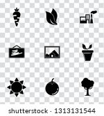 vector nature sign symbols. eco ... | Shutterstock .eps vector #1313131544