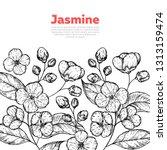 jasmine sketch. hand drawn... | Shutterstock .eps vector #1313159474