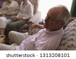 side view of active senior man... | Shutterstock . vector #1313208101