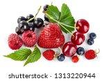 set fresh berry. mix summery...   Shutterstock . vector #1313220944