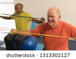 front view of active senior man ... | Shutterstock . vector #1313302127