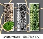 three shameless snake skin...   Shutterstock .eps vector #1313435477