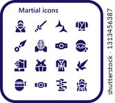 martial icon set. 16 filled... | Shutterstock .eps vector #1313456387