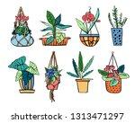 different houseplants in... | Shutterstock .eps vector #1313471297