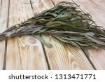 eucalyptus bath broom ... | Shutterstock . vector #1313471771