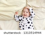 portrait of a smiling baby in... | Shutterstock . vector #1313514944