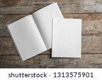 open and closed blank brochures ... | Shutterstock . vector #1313575901