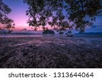 the background of the twilight... | Shutterstock . vector #1313644064